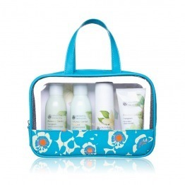 Frangipani Travel Set