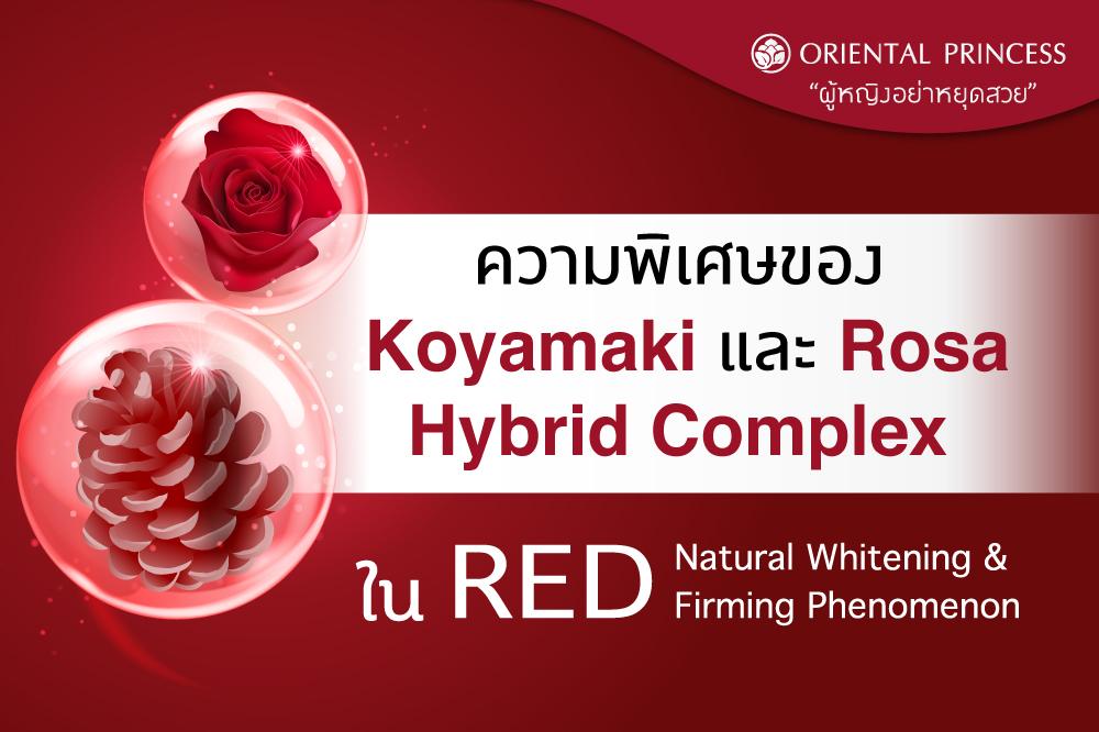 ความพิเศษของ Koyamaki และ Rosa Hybrid Complex  ใน RED Natural Whitening & Firming Phenomenon  ผิวกระจ่างใส ตึงกระชับภายใน 1 สัปดาห์